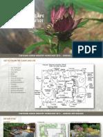 Landscaping101.pdf