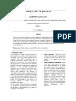 Informe Biología Tejidos Animales