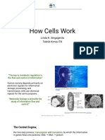 how cells work