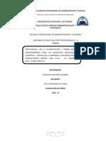 Informe Practicas Pre Profesionales Upla Ultimo Docx