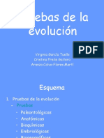Pruebas de La Evolucin