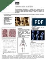 Osteoporosis - Integrador Morfología (Stephanie Lemus) (1)
