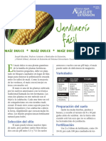how-to-grow-sweet-corn-spanish.pdf