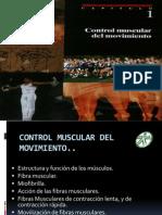 Control Muscular Del Movimiento2 - Copia