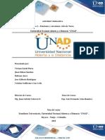 Actividad Colaborativa - Tarea 1 - 100410_101.docx