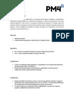 Perfil Tecnico - Analista de Proyectos_0