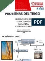 Proteinas Del Trigo