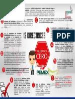 CERO TOLERANCIA 12 directrices - copia.pptx