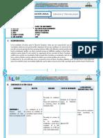 PROGRAMACION DE CIENCIA Y TECNOLOGIA--1° GRADO..docx