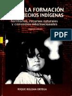 Roldán 2005 - Manual para la formación en derechos indígenas.pdf