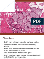2.Medical School Histology Epithelium and Glands