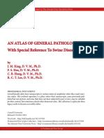 King_John_Atlas_Pathology_I.pdf