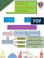 Sistema Hematopoyético y Linfático Expo