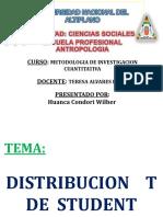 Distribucion t Student WILBER