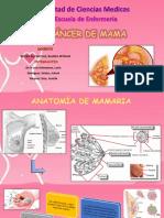 cancer-de-mama (1) (1)