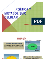 Bioenergética y enzimas 2012.pdf
