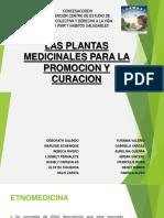 Medicina Natural Fabiola Alves Perez