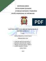 auditoria-operativa-informe