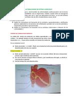 alteraciones-del-ritmo-cardiaco.docx