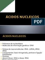 DNA E RNA.pptx