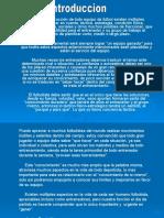 metodologiafutbolprofesional-100121054641-phpapp01