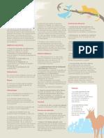 Concurso-de-Dibujo-2019-Información-General.pdf