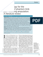 timms   carus - lit review on mirror therapy to alleviate phantom limb pain