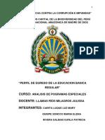 Monografia Perfil de Egreso. Analisis.