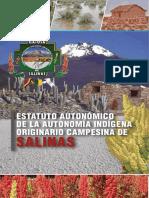 Estatuto Autonómico Indígena Originario Campesina de la Nación de Salinas
