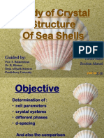 Study of Crystal Structures of Sea Shells