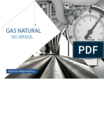 Cartilha Transporte de Gas Natural No Brasil Aspectos Regulatorios Fgv Ceri Jun 2016