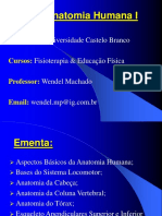 Conteudo Programatico Anato I