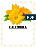 CALENDULA.docx