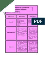 Cuadro Comparativo Informatica - Copia