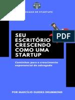Seu Escritório Crescendo Como Uma Startup_E-book