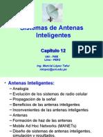 CH 12 Smart Antennas UNI 2010-1
