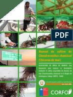 MANUAL-CHICOREA.pdf