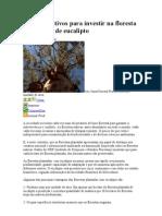 10 Bons Motivos Para Investir Na Floresta Plantada de Eucalipto