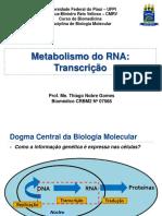 Aula 07 - Metabolismo Do RNA (Transcrição)