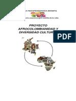 Proyecto de Afrocolombianidad