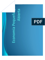 9 Economía Pequeña y Abierta- Sector Externo 2o. Parcial