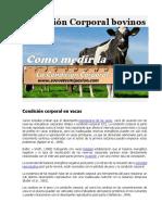Condición Corporal bovinos.docx