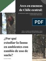 Aves en Cuencas de Chile Central_congreso Ornitologia_nov_2017