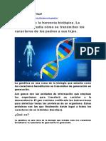 Genetica Organizacional