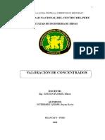 VALORACION DE CONCETRADOS.docx