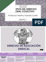 Trabajo Final Principios de Derecho Colectivo (1)