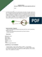 guias de laboratorio.pdf