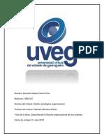 Desarrollando la filosofía organizacional de una empresa uveg