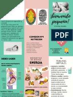 Alimentacion en El Embarazo (2)