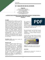 abc-Sintesis-y-Analisis-de-Una-Sal-de-Mohr-Lu-y-Pdr.doc